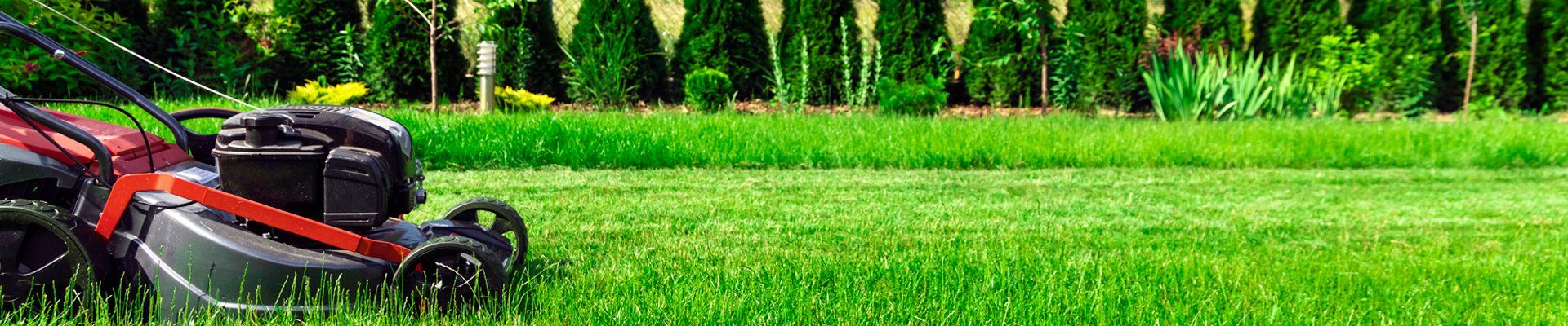 Lawn & Grass Cutting Mowing Services Companies Whitby Durham Region